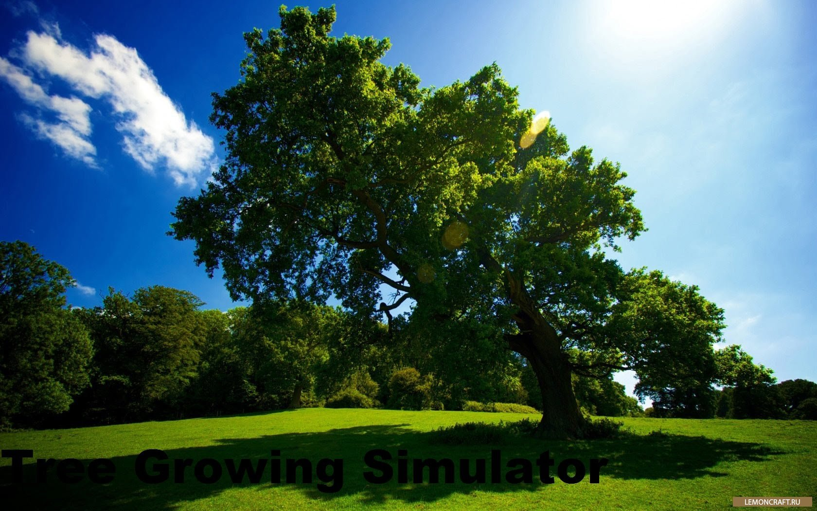 Мод на быстрорастущие деревья Tree Growing Simulator [1.12.2] [1.11.2] [1.10.2] [1.7.10]