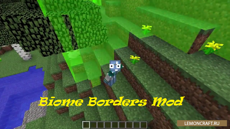 Мод на подсветку границ биомов Biome Borders [1.12.2] [1.11.2] [1.10.2] [1.9.4]